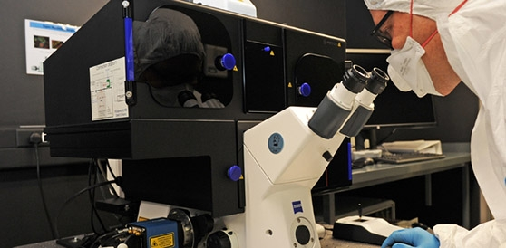 Cell Imaging Microscope